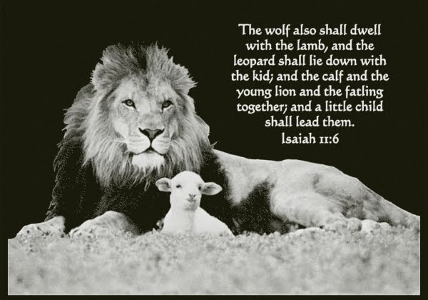 the lion shall lie down with the lamb